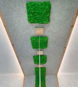 WEMA Flüssigtapeten LED Zirbenholz