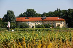 Steigenberger Hotel in Deidesheim